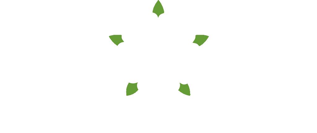 Coletta & Tyson logo